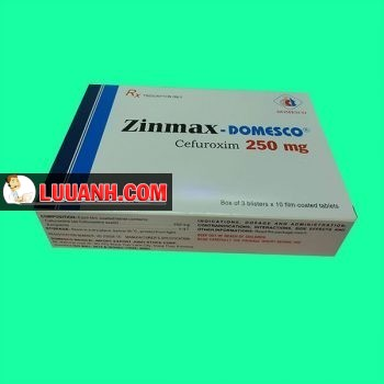 Zinmax Domesco
